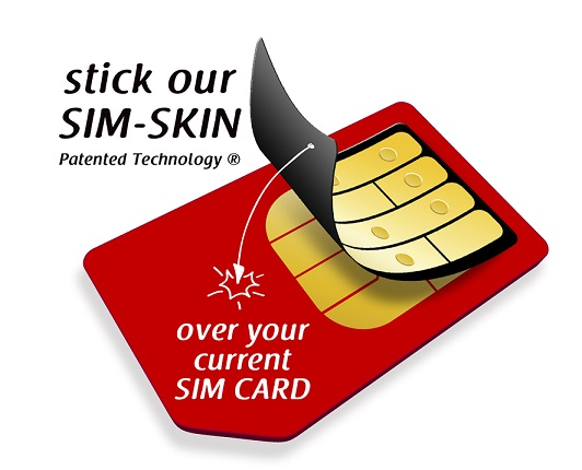 Sim-skin-red-illustration